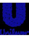 Unilever De Argentina S.a.